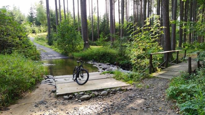 Bulovský potok meandruje lesy k Višňové.
