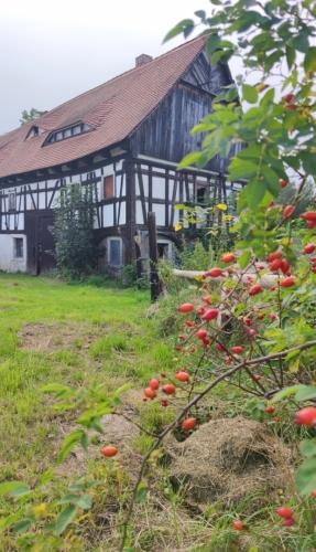 Hrázděný dům v Minkovicích.