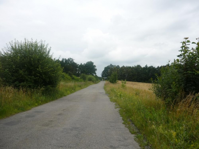 Cesta do mírného kopečka