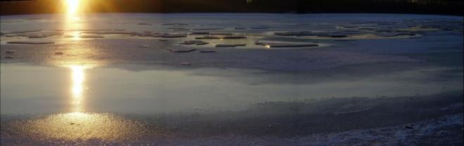 Bezdrev je třetí největší rybník v České republice. Hráz má dlouhou 400 m a vysokou 7,8 m. Vodní plocha je v nadmořské výšce 381 m má rozlohu 394 ha, katastrální výměra činí 520 ha. Na několika místech rybník dosahuje hloubky až 7 m. Obvod měří 18,5 km.