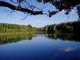 Velký Knopr je další z mnoha menších rybníků, tentokráte ukrytý v lesích zlivska.