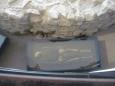 Kosterní pozůstatek a část zbytku rotundy