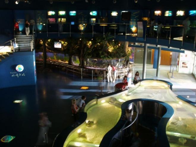 Mořské akvárium je jedním z nejznámějších barcelonských komerčních trháků a patří mezi největší v Evropě.