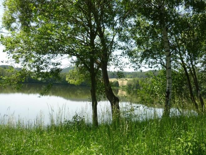 Rabský rybník